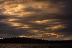 IMG_1649-1 (Andre56154) Tags: schweden sweden sverige schren archipelago wasser water ufer kste coast sonne sun himmel sky cloud wolke sunset dmmerung dawn