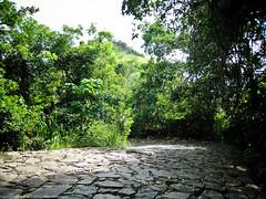 Дорога к храму