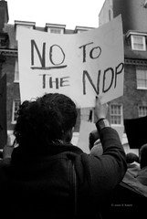 No To The NDP. (Stationary Nomads) Tags: england bw woman white man black men london alexandria sign demo justice democracy support women lotus tunisia flag jasmine tunis rally central protest egypt embassy demonstration cairo solidarity revolution egyptian aswan rule protester parklane placard southstreet tanta autocrat megaphone benali chant  chanting mubarak suez egyptians kuffiyeh  zagazig jan25 25january hosni sidibouzid mansoura emergencylaw