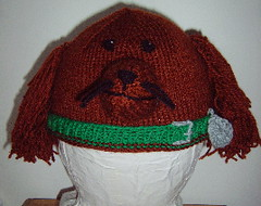 Irish Setter (Impression-Knits) Tags: dog dogs strange fun weird knitting funny hats novelty novel unusual knitted setter