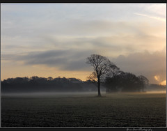 Morning Mist 2 (Brian Gort Photography) Tags: morning mist fog sunrise nikon mood cheshire ngc goldenhour s3000 widnes cronton flickraward nikonflickraward naturescarousel flickraward5 flickrawardgallery