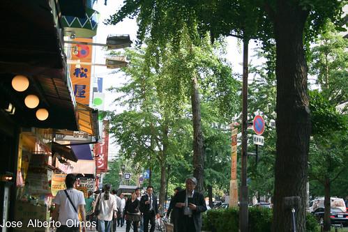 Caminando por Osaka