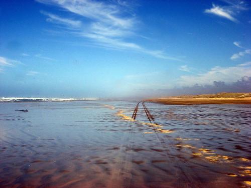 Coach tyre trail on Ninety Mile Beach, Northland Region, North Island, New Zealand