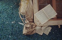 (yyellowbird) Tags: blue house abandoned carpet book illinois sheetmusic shag mattress rockford