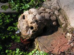 Font del lleó a Aiguaviva (esta_ahi) Tags: españa spain agua fuente font león aigua tarragona lleó baixpenedès aiguaviva испания elmontmell