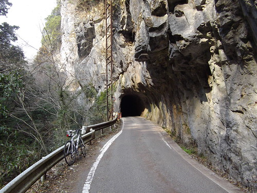 羽山第二隧道 #1