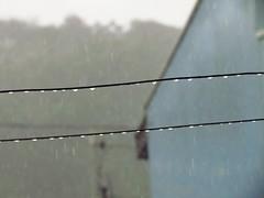 Rain, rain, go away... (Petit Flicit) Tags: rain chuva