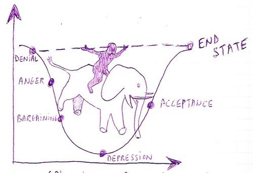 Rider Elephant