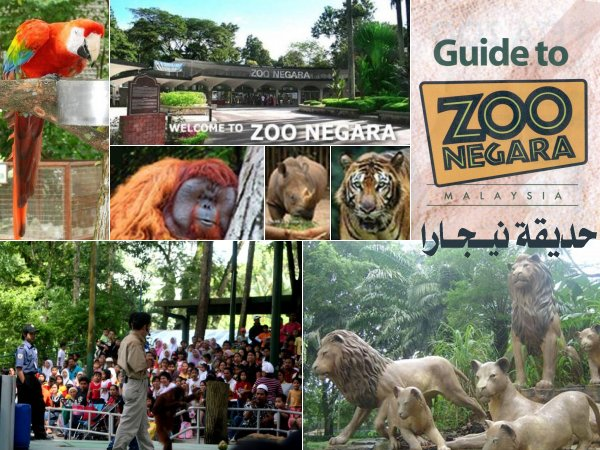 رسوم دخول الاماكن السياحيه في ماليزيا 21