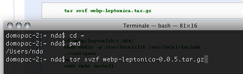 untar the WebP and leptonica source code
