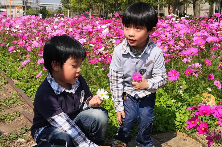 蕭壟文化園區(佳里糖廠)0080