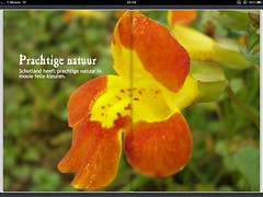 EPUB met vaste layout
