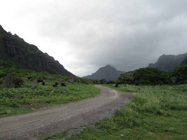 Hawaii, Oahu, Kaneohe, Kualoa Ranch,Ka'a'awa Valley