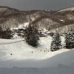 スキー日和?