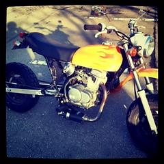 久しぶりにバイクを出した。