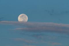 Lua ao amanhecer (Luiz L.) Tags: moon sunrise lua l amanhecer luiz 2012 luizlaercio ©2011 luizl ©20112012luizl