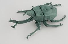 Kabutomushi 1 (ClosedUnsink) Tags: sculpture robert bug paper insect origami helmet beetle samurai fold folding mushi lant kabuto kabutomushi ogami