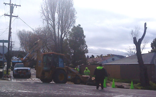 A city crew cuts and removes a tree on Mariposa Street at Tehama Avenue in the Richmond Annex early on Feb. 25, 2011.