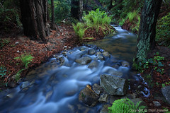 Soberanes Creek (right2roam) Tags: california park longexposure mountains nature creek forest dark photography ancient state bigsur peaceful blurred canyon hike trail fairy fantasy mysterious mystical stony redwoods ferns garrapata range milky santalucia oldgrowth etatsunis soberanes الولاياتالمتحدة right2roam elijahhassler