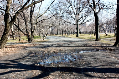 First MudPuddle Central Park March 2 029 #2