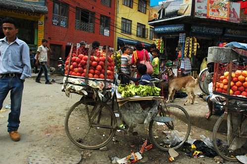 Fruit bike street vendor, apples, bananas, homemade scale, garbage, goat, children, Puskar Enterprises, posters, Kathmandu, Nepal by Wonderlane