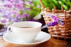 tea ( CrazmydRed ) Tags: purple tea bokeh lila porcelain