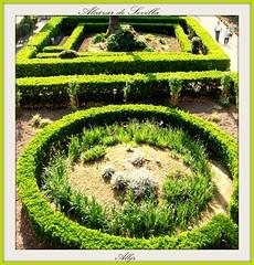 Formas (Alberto Jiménez Rey) Tags: verde green grass garden sevilla jardin alberto manuel rey alcazar lucia formas martinez circulo geometria hierba tapia cuadrado jimenez albjr