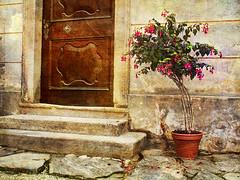 Oh Ancient of Doors (Pam House) Tags: door ancient castle stone steps doorway plant fuschia czechrepublic architecture texture skeletalmesstextures 4148p