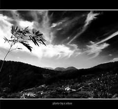 morning mood [explored] (e.nhan) Tags: life light art nature landscape dof vietnam backlighting enhan