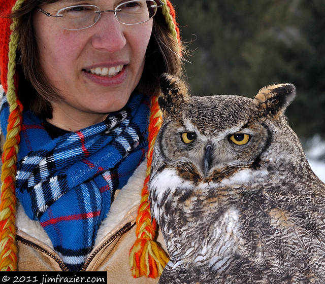 Doesn't everyone have a Great Horned Owl for a pet?