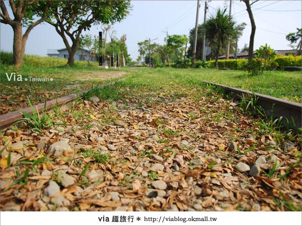 【嘉義景點】新港板頭村交趾剪粘藝術村~到處都是有趣的拍照景點!6