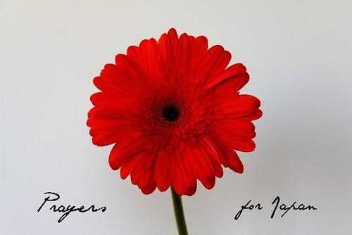 Prayers for Japan