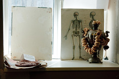 In the studio, Volgograd (k.dmitrijewa) Tags: stilllife window digital canon studio skeleton russia artists samovar russie rusia volgograd russland  rosja rusya samowar 40d oroszorszg canon40d pennyjey