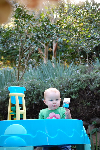New Water Table