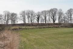 Stadtwall von Haithabu - Wikinger Museum WHH 02-04-2011