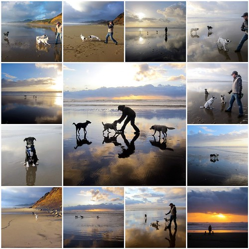 Oregon Coast — April 2, 2011 - Montage