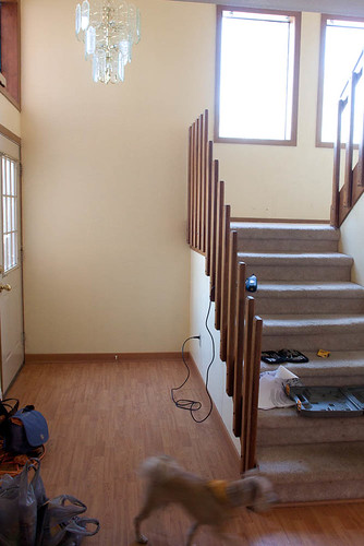 New House - before