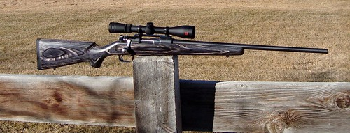 30 30 Coyote Laminate Rifle Armslist For Sale Springfield