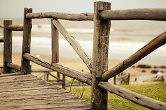 Beach Fence (nina's clicks) Tags: wood sea beach water grass fence hff happyfencefriday