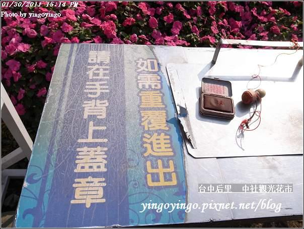 台中后里_中社光觀花市20110130_R0017654