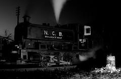 DSCF1498 (Owen-Edwards-NCB) Tags: john 22 industrial board north engine railway william andrew steam east national locomotive coal locomotion barclay bowes trimble ncb 040 wst steuart no22