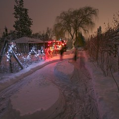 snowy-night-skate