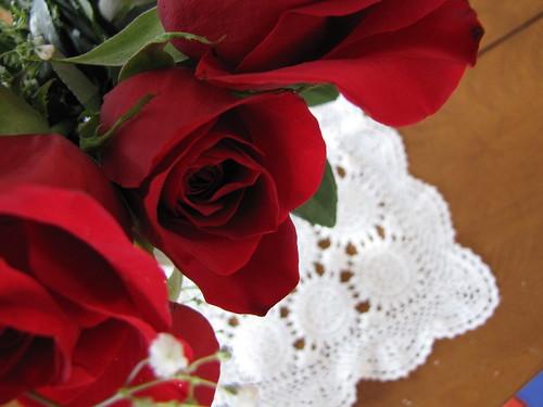 roses feb 2011