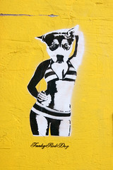 Street Art (dprezat) Tags: street england urban stencils art brighton tag graf peinture bombe pochoir northlanes aérosol sonyalpha700 funkyroddog
