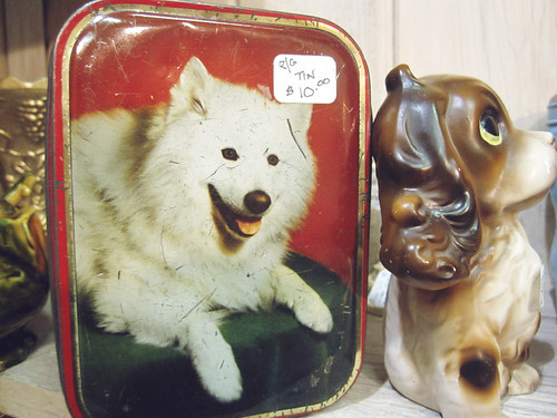 dog tin