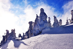 snow monsters (ida-10) Tags: travel winter white mountain snow ice nature japan landscape miyagi zao  snowmonsters  juhyo softrime