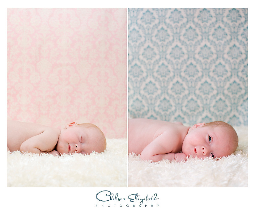 newborn twins boy and girl pink and blue background