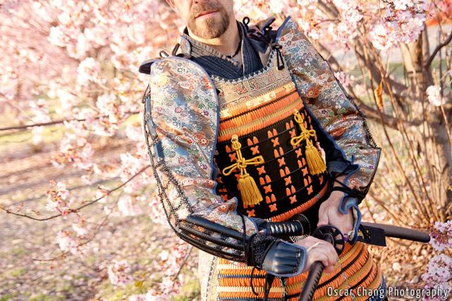 Sakura2011_1056