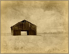 Standing Alone (MEaves) Tags: wood monochrome sepia barn alone kentucky forgotten solo weathered solitary textured antiquity ruralamerica sigma70300 farmstructure k20d pentaxk20d pentaxart