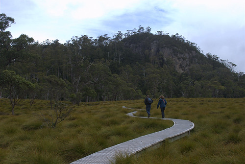 Cradle Mountain boardwalk